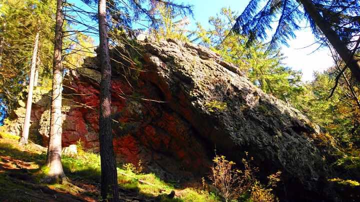 Campen im Thüringer Wald Campervan